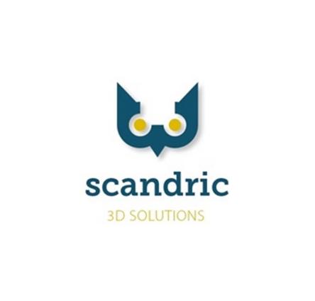 scandric
